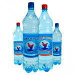 Вода питьевая «Городецкая» газ 0.5 л. (упаковка/12 шт.)