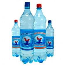 Вода питьевая «Городецкая» негаз 0.5 л. (упаковка/12 шт.)